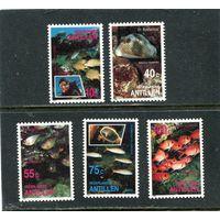 Нидерландские Антиллы. Рыбы карибских вод