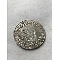 Пруссия Грош 1543