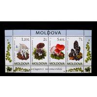 Молдова 2010 г Флора Грибы Блок