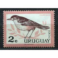 Фауна. Птица. Уругвай. 1963. Чистая