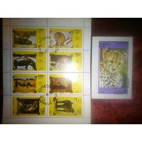 Оман. 1973. Фауна. Мал. лист, 1 бл.