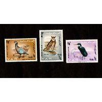 Марки-Северный Йемен-1965-Птицы