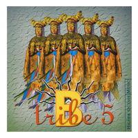 B-Tribe - 5 (2003)