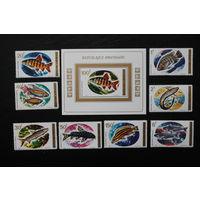 Руанда. 1973. Фауна. Рыбы. Серия+Блок