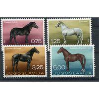 Югославия. Породы лошадей