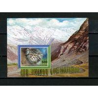 Таджикистан, 1996г. манул, 1 блок