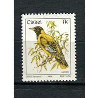Сискей (Южная Африка) - 1984 - Птицы - [Mi. 56] - полная серия - 1 марка. MNH.