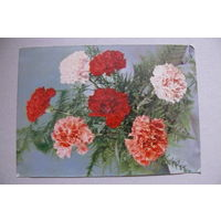 Цветы, 1963, подписана (ГДР).