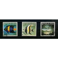 Джибути 1981, рыбки, 3м.