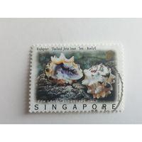 Сингапур 1997. Морские улитки из Таиланда и Сингапура. Полная серия