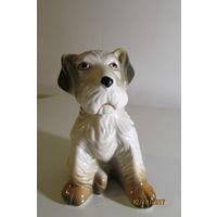 Статуэтка собака фарфор Германия 10 см  Кэт Гончары