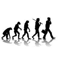 Поведение, как результат эволюции - биология - реферат