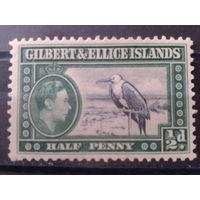 Гилберта и Эллис острова 1939 Колония Англии, Птица*