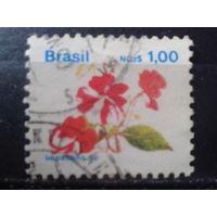 Бразилия 1990 Стандарт, цветы 1,00