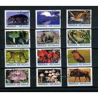 Ангола 1999г, флора и фауна, 12м.