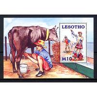 2006 Лесото. Молодые пастухи