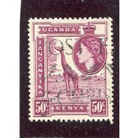 Уганда - Кения - Танганика. Британская колония. Жираф