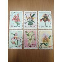 1965 Орхидеи (Польша) 6 марок