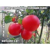 СЕМЕНА Томат Сладкоежка (селекция Седек)