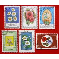 Афганистан. Цветы. ( 6 марок ) 1988 года.