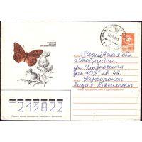 1984 год ХМК Перламутровка 84-463