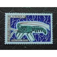 Камерун.  Морская фауна.