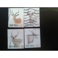 ЮАР 1998 антилопы