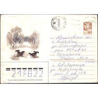 1984 год С.Куприянов 84-218