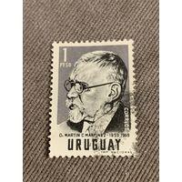 Уругвай. Доктор Мартин Мартинэз 1859-1959