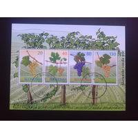 Словения 2000 виноград  блок