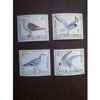 Югославия 1984 г.Птицы.