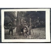 Фото военных. Послевоенные физкультурные упражнения. Польша. Июль 1945 г. 9х13 см.