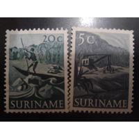 Суринам 1953 колония Нидерландов стандарт