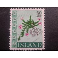 Исландия 1968 цветы
