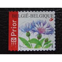 Бельгия 2006г. Флора.