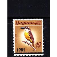 Фауна. Птицы. Гайана. 1981. 1 марка с надпечаткой. Michel N 634. (14,0 е)