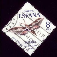 1 марка 1970 год Испанская Сахара Бабочка 318