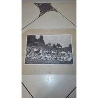Старое коллективное фото на картоне 1959г Алма-Ата