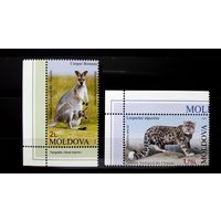Молдова 2013 г Фауна Зоопарк Кенгуру Леопард Дикие кошки Угол