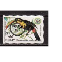 Белиз-1982,(Мих.632)  **  фауна, попугаи