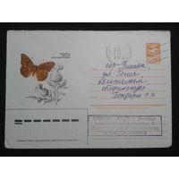 1985 лесная перламутровка прошло почту