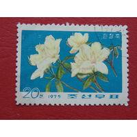 Корея 1975г.  Цветы.