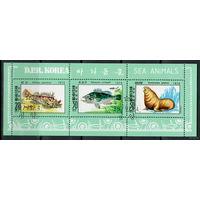 Корея 1979. Рыбы. Сцепка марок. Полная серия