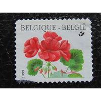 Бельгия 1999г. Флора.