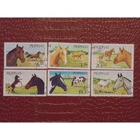 Филиппины 1985г. Лошади