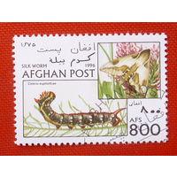 Афганистан. Насекомые. ( 1 марка ) 1996 года.