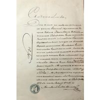 Старинный документ Свидетельство 1873 год
