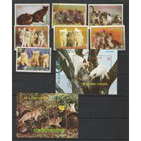 Экваториальная Гвинея (кошки) 1976г.