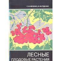 Ивченко. Лесные плодовые растения