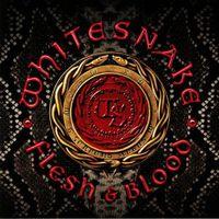 WHITESNAKE - Flesh & Blood  // 2LP new